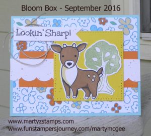 Bloom Box Sept - Marty